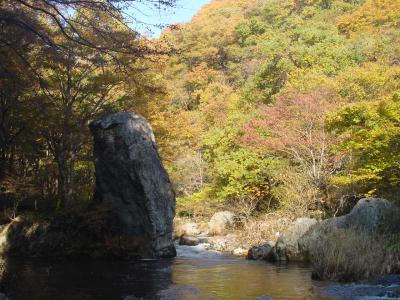 丹藤川渓流
