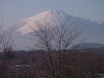 輪台城から見た岩手山